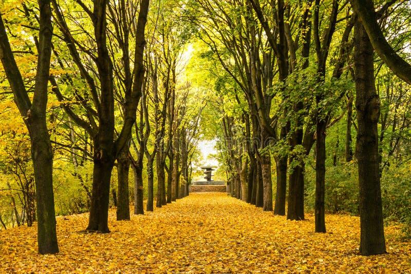 De steeg van de herfst royalty-vrije stock foto