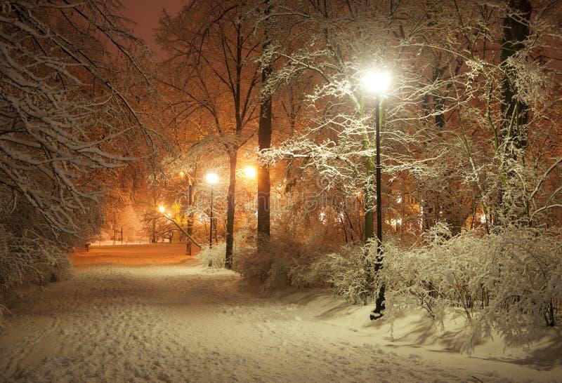 De steeg van de winter bij nacht stock fotografie