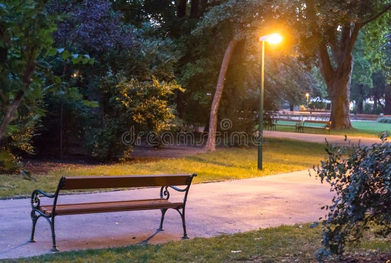 De steeg van het avondpark stock fotografie