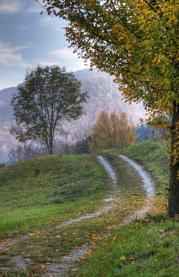 De steeg van het land in de herfst stock foto