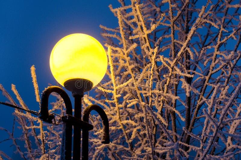De steeg van de winter in park en glanzende lantaarns gebouwd 1779 Ironbridge Shropshire toont een deel van spectaculaire licht v stock afbeeldingen