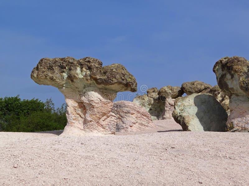 De steen schiet natuurlijke wonder plaats als paddestoelen uit de grond stock foto