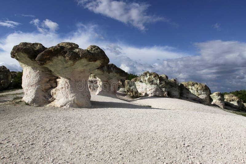 De steen schiet natuurverschijnsel als paddestoelen uit de grond stock foto