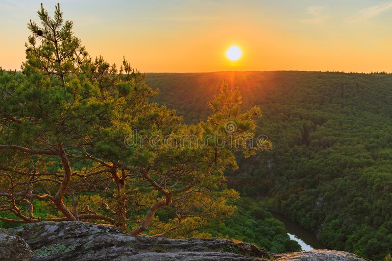 De Steen van gezichtspuntsealsfield van Nationaal Park Podyji in Tsjechische Republiek royalty-vrije stock foto