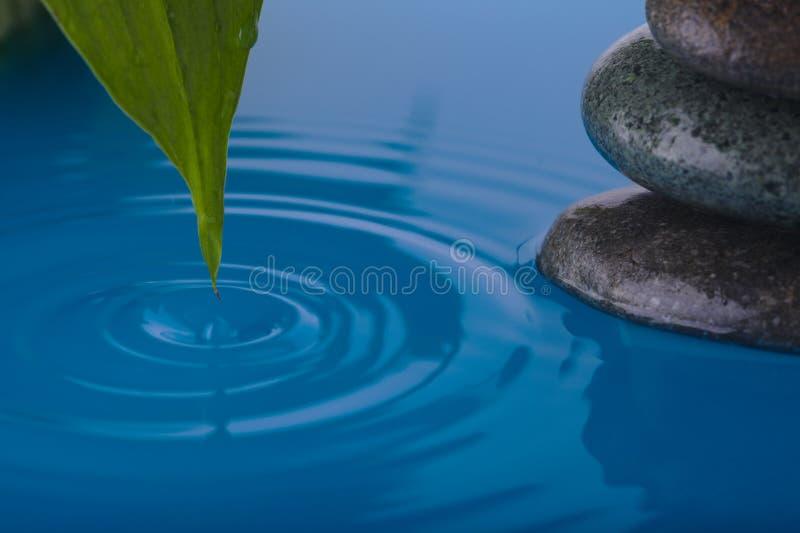 Het Water van de Steen van Zen en het Blad van de Installatie van de Vrede stock afbeelding