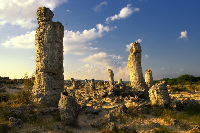 De Steenbos van het aardfenomeen, Bulgarije/Pobiti-kamani/ stock fotografie