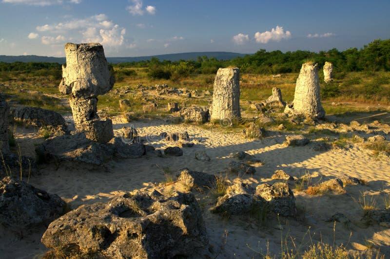 De Steenbos van het aardfenomeen, Bulgarije/Pobiti-kamani/ royalty-vrije stock fotografie
