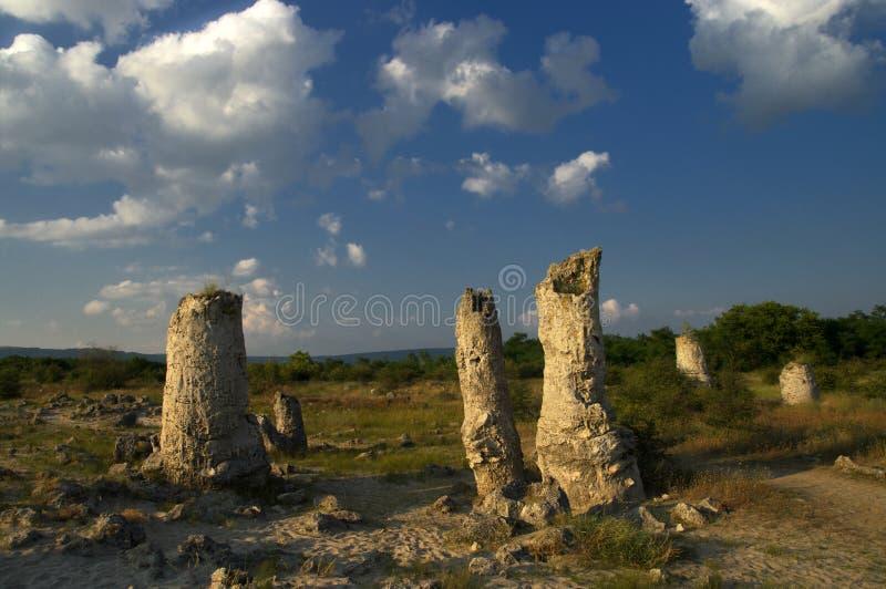 De Steenbos van het aardfenomeen, Bulgarije/Pobiti-kamani/ stock afbeeldingen