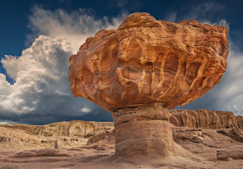 De steenpaddestoel is een unieke geologische formatie, Israël stock foto