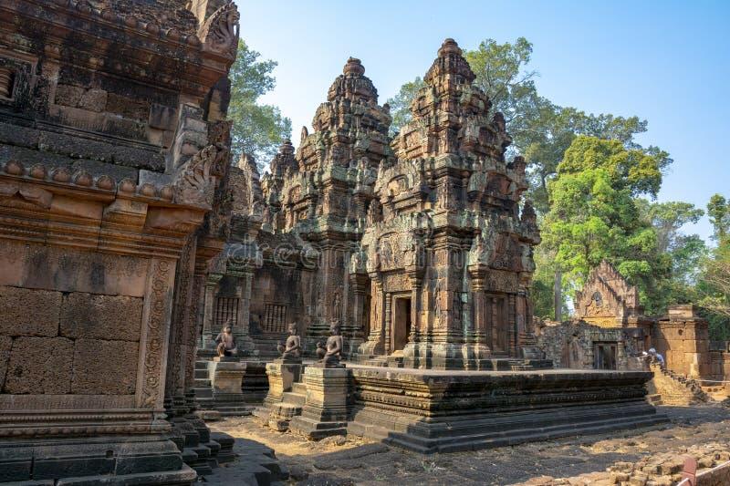 De steenstructuur van de tempel van Banteay SREI kambodja stock fotografie