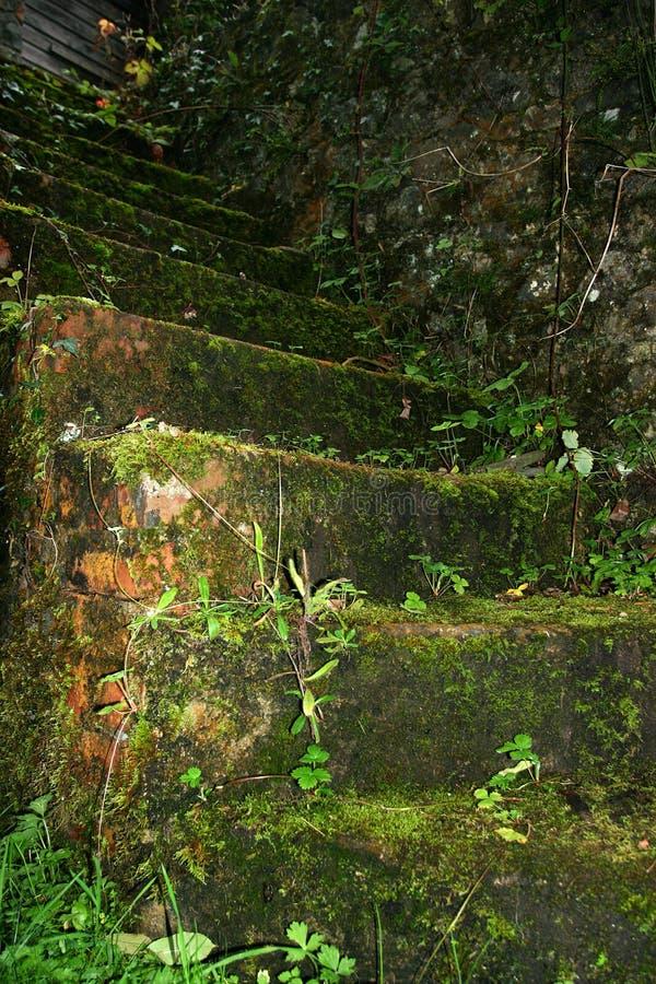 Download De Steile Trap Van De Steen Stock Foto - Afbeelding bestaande uit downward, vakmanschap: 295022