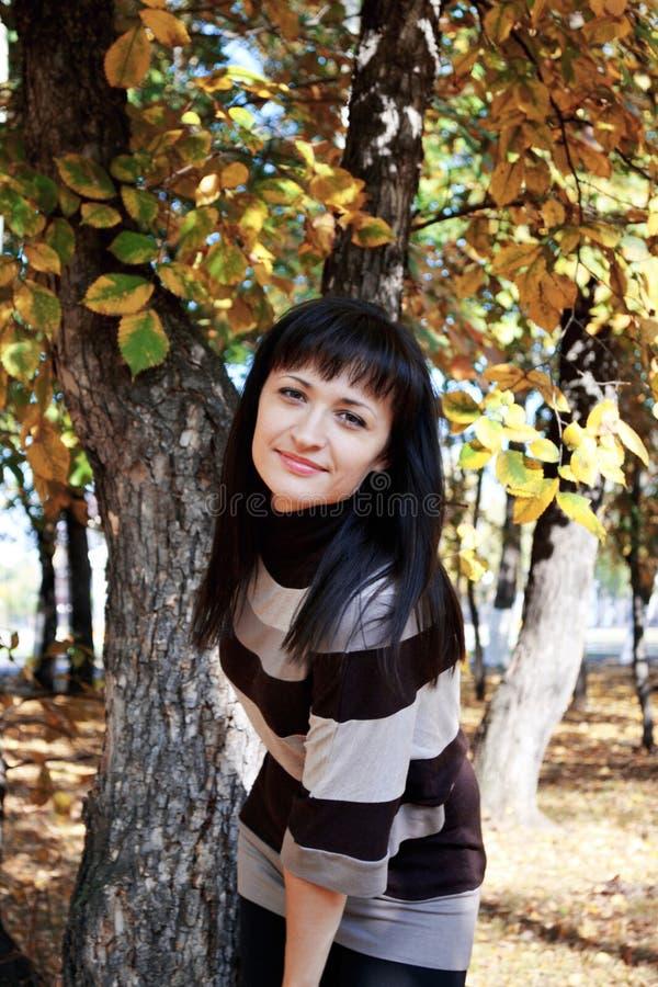 De stemming van de herfst stock foto