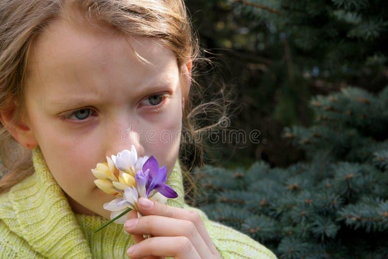 De stemming van de lente stock fotografie