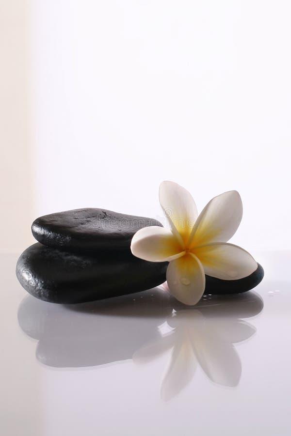 De stenen en de bloem van het kuuroord stock fotografie