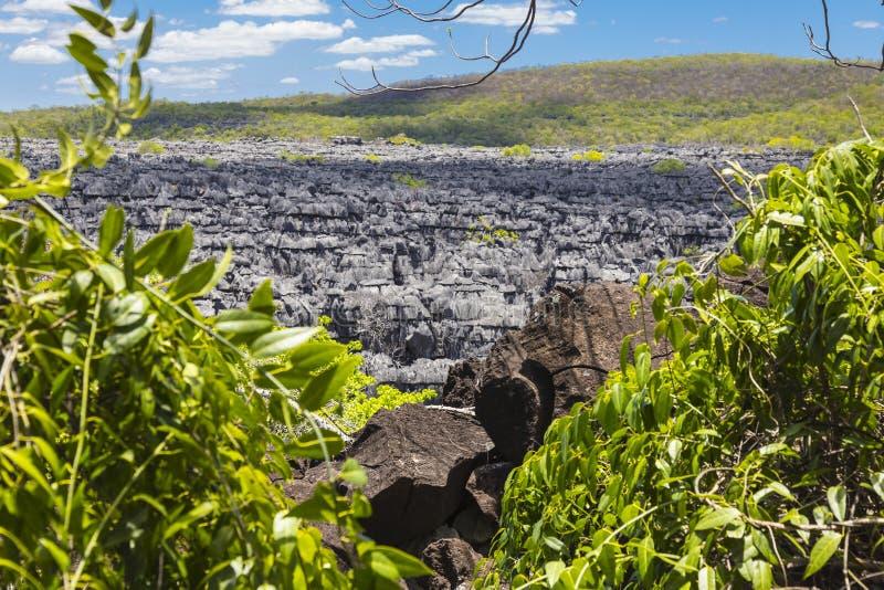 De stenen van Ankaranatsingy, het noordelijke oriëntatiepunt van Madagascar stock afbeeldingen