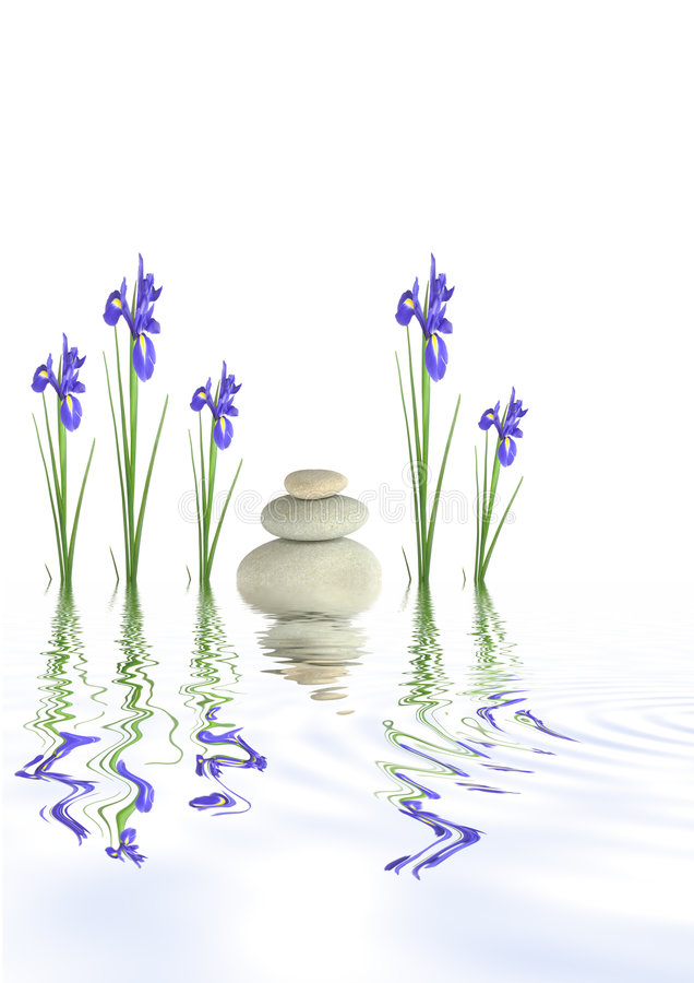 De Stenen van het kuuroord en de Bloemen van de Iris stock fotografie
