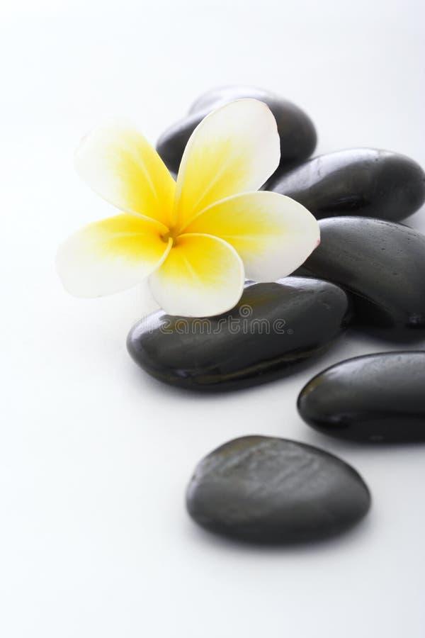 De stenen van het kuuroord met frangipani stock afbeelding