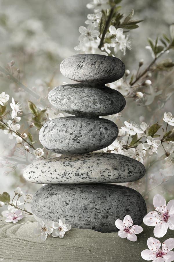 De stenen van Zen en bloembloesem stock fotografie