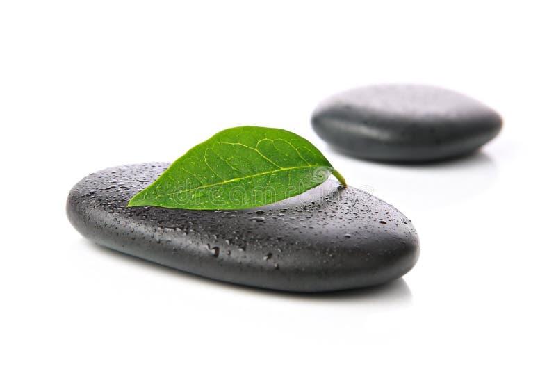 De stenen van Zen met blad royalty-vrije stock foto