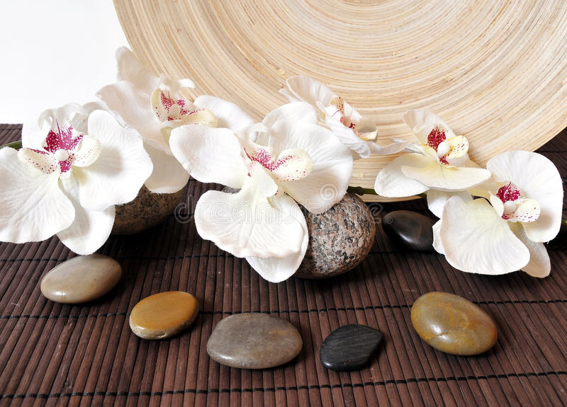 De stenenorchideeën van Wellness royalty-vrije stock foto