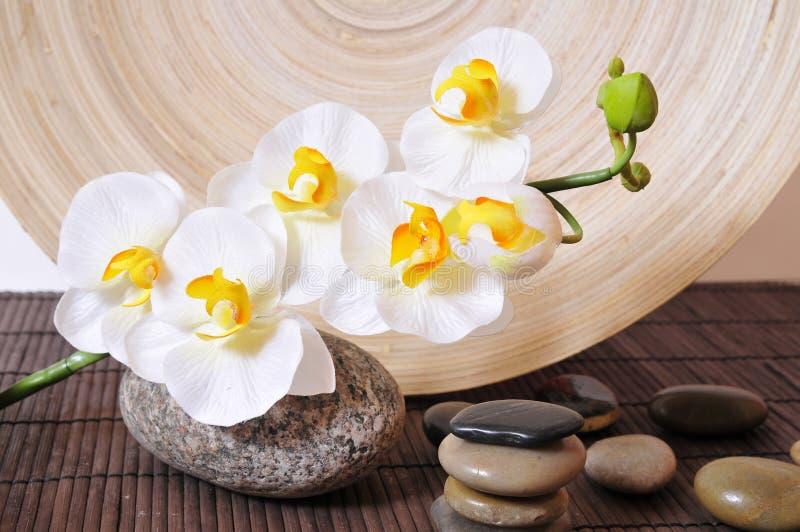 De stenenorchideeën van Wellness royalty-vrije stock afbeeldingen