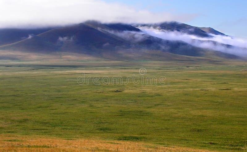 De steppe van Mongolië stock afbeelding