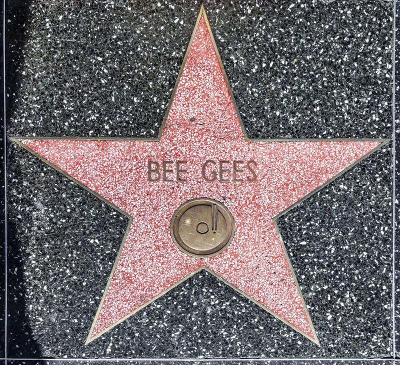 De ster van Bee Gees op Hollywood-Gang stock afbeelding