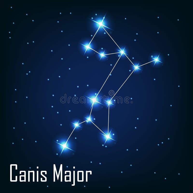 De ster van constellatiecanis major in de nacht royalty-vrije illustratie