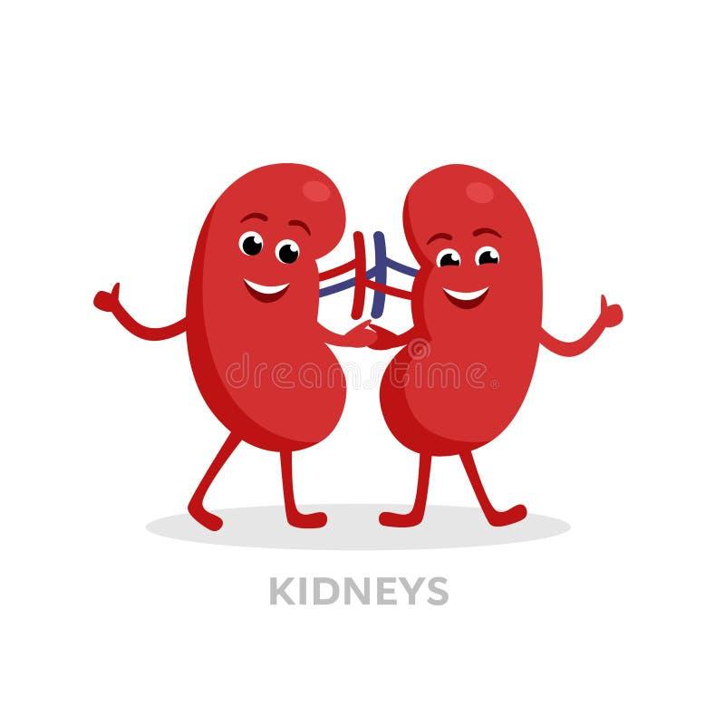De sterke gezonde die karakters van het nierenbeeldverhaal op witte achtergrond worden geïsoleerd Het gelukkige vector vlakke ont royalty-vrije illustratie
