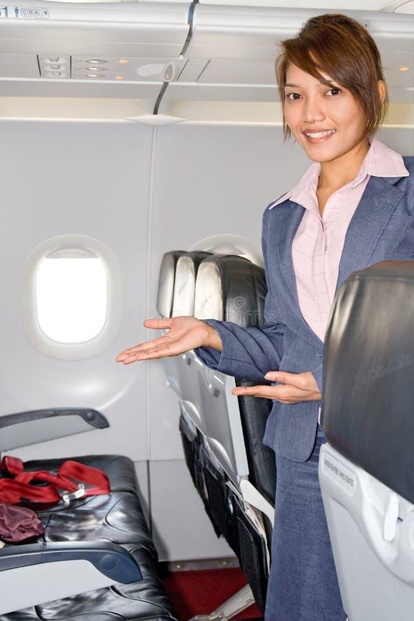 De stewardess van de lucht royalty-vrije stock foto's
