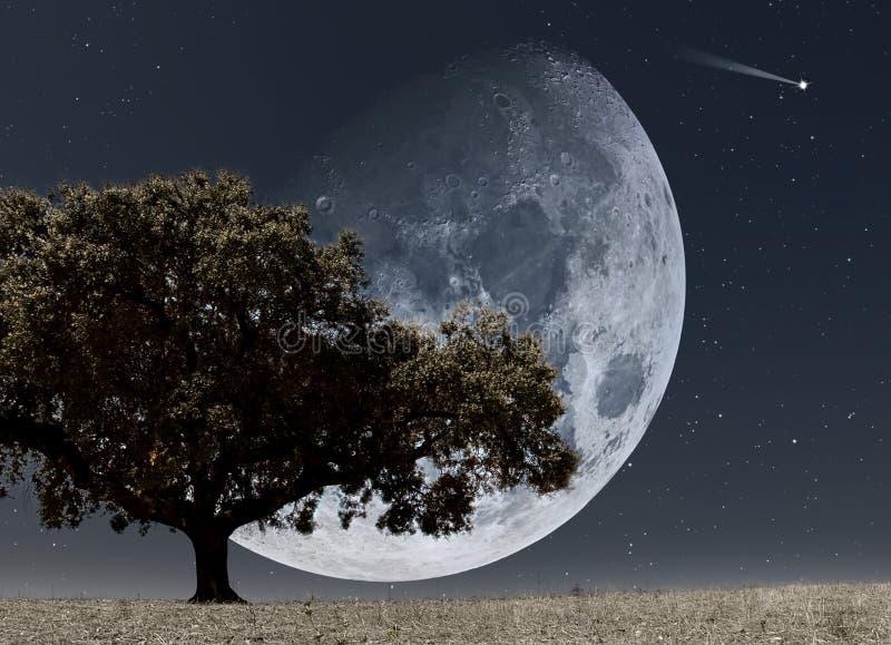 De stijging van de maan vector illustratie