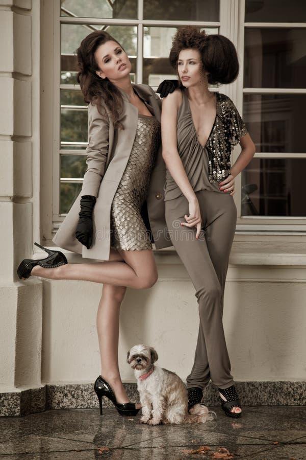 De stijlfoto van de mode van een twee manierdames royalty-vrije stock afbeeldingen