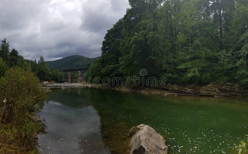 De stille rivier Prut onder het bergbos royalty-vrije stock foto