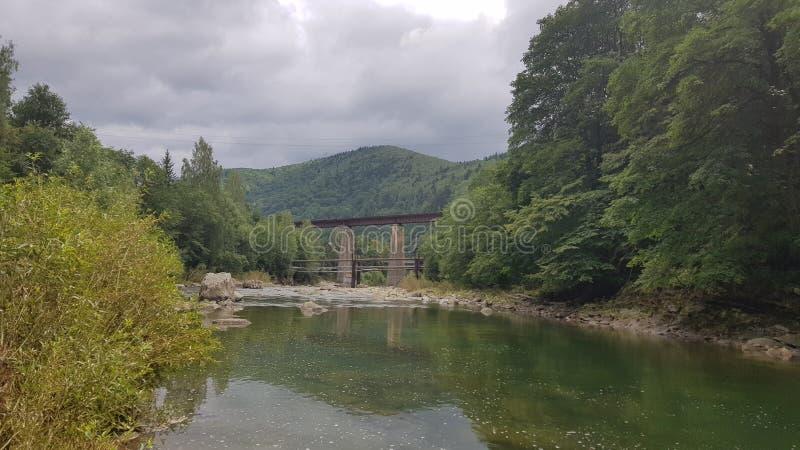 De stille rivier Prut onder het bergbos stock afbeeldingen