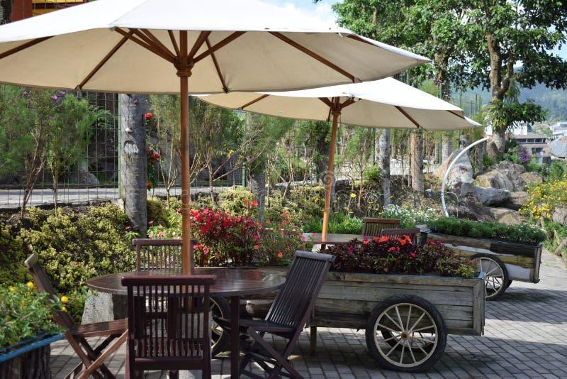 De stoel en de lijst van de Beutifulltuin van houten en bloemvrachtwagen stock foto's