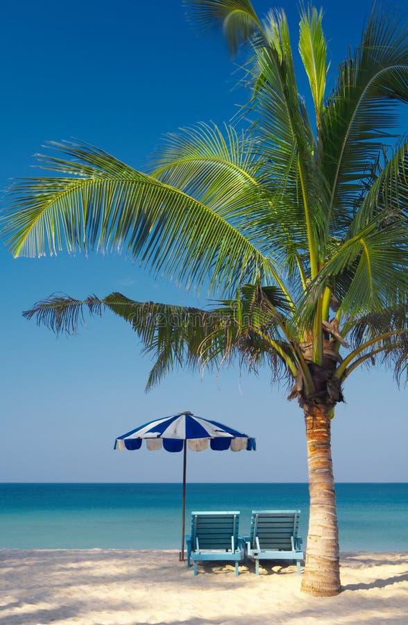 De stoelen & de paraplu van de palm royalty-vrije stock foto's