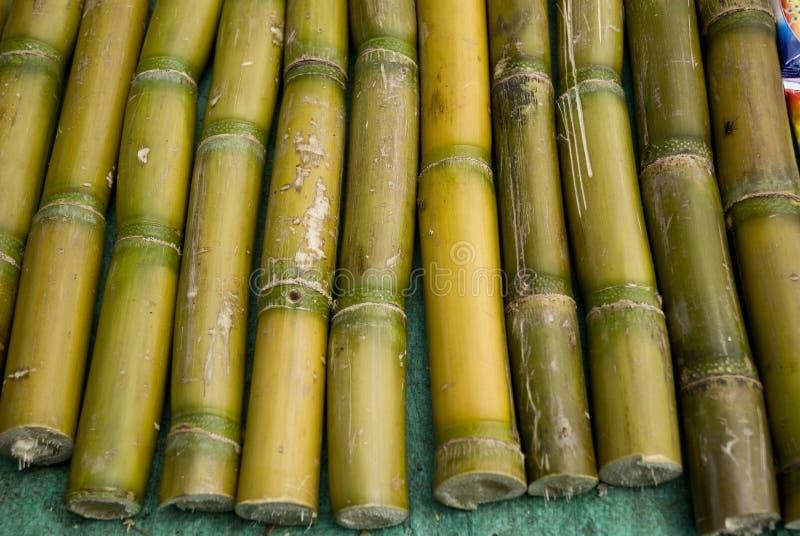 De stokken van het suikerriet voor verkoop in een markt stock foto