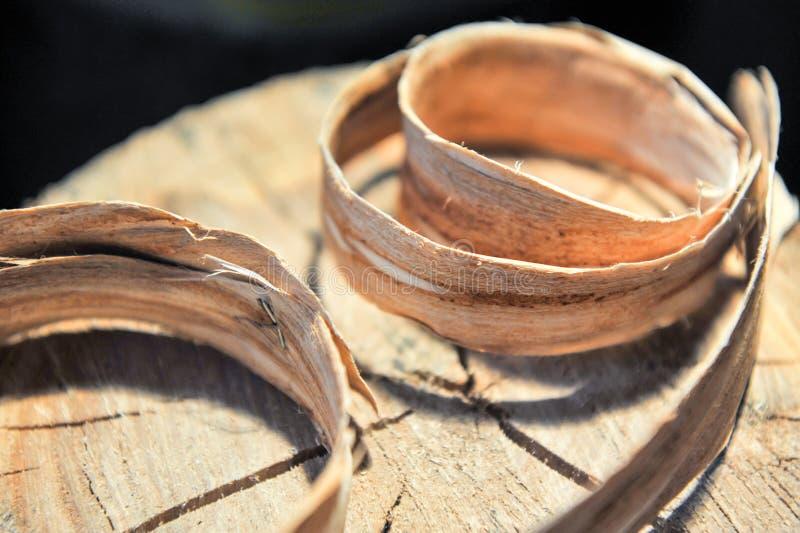 De stomp van bomen met ringen van de groei van een rilling is hierboven verdraaid van Concept timmerwerk en huis-maakt royalty-vrije stock foto