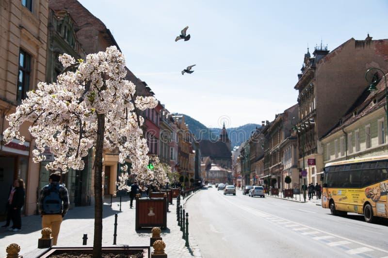 De straat van de Brasovstad royalty-vrije stock fotografie