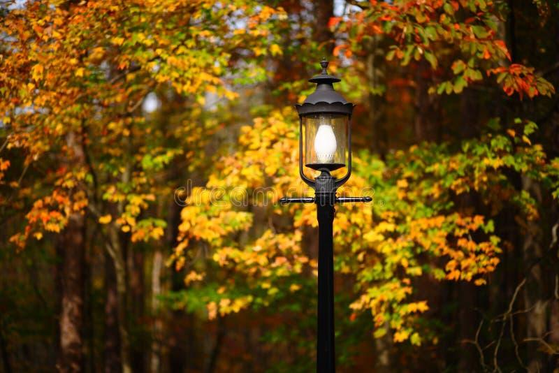De Straatlantaarn van de herfst royalty-vrije stock foto