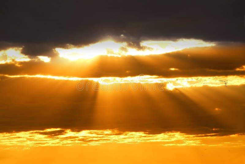 De stralen van de zon royalty-vrije stock foto