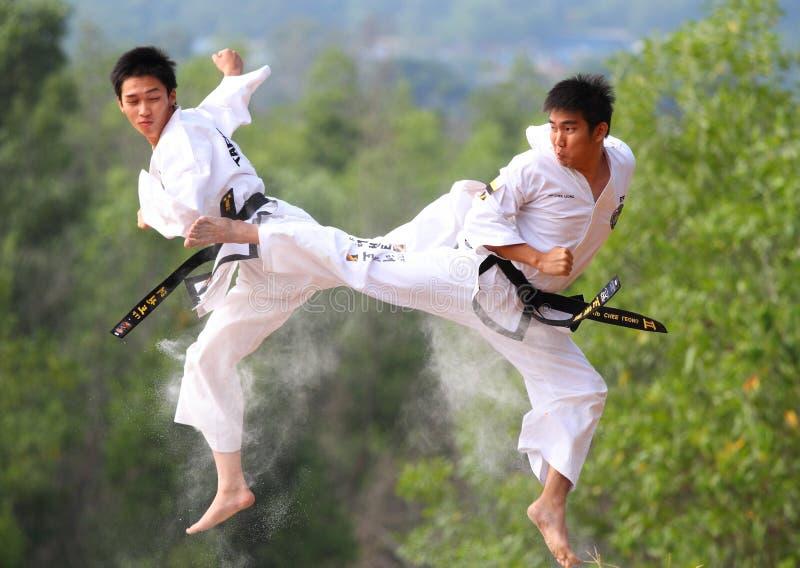 De Strijd van Taekwondo stock afbeeldingen