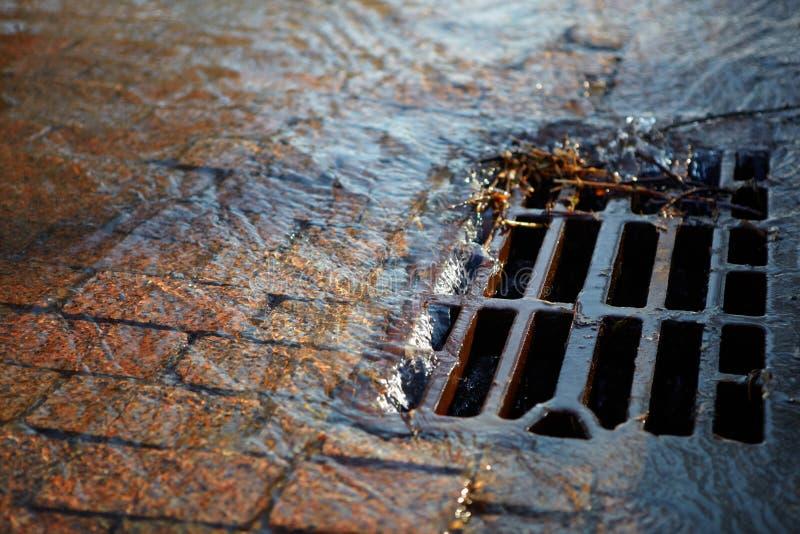 De stromen van het water in het broedsel op een de lente zonnige dag stock foto's
