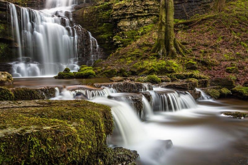 De stromende Kracht van Watervalscaleber in het de Dallen Nationale Park van Yorkshire stock foto