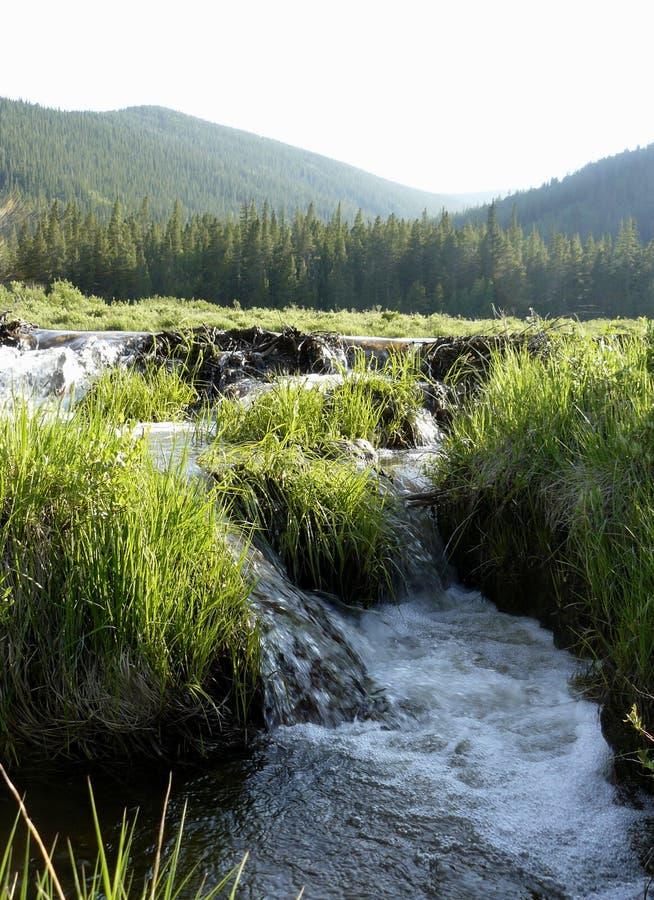 De stroom van Colorado stock afbeeldingen