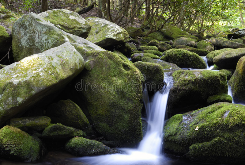 Download De stroom van de berg stock foto. Afbeelding bestaande uit mooi - 2980732