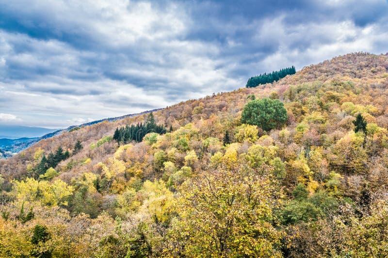 De stroom van de berg in de herfst royalty-vrije stock fotografie