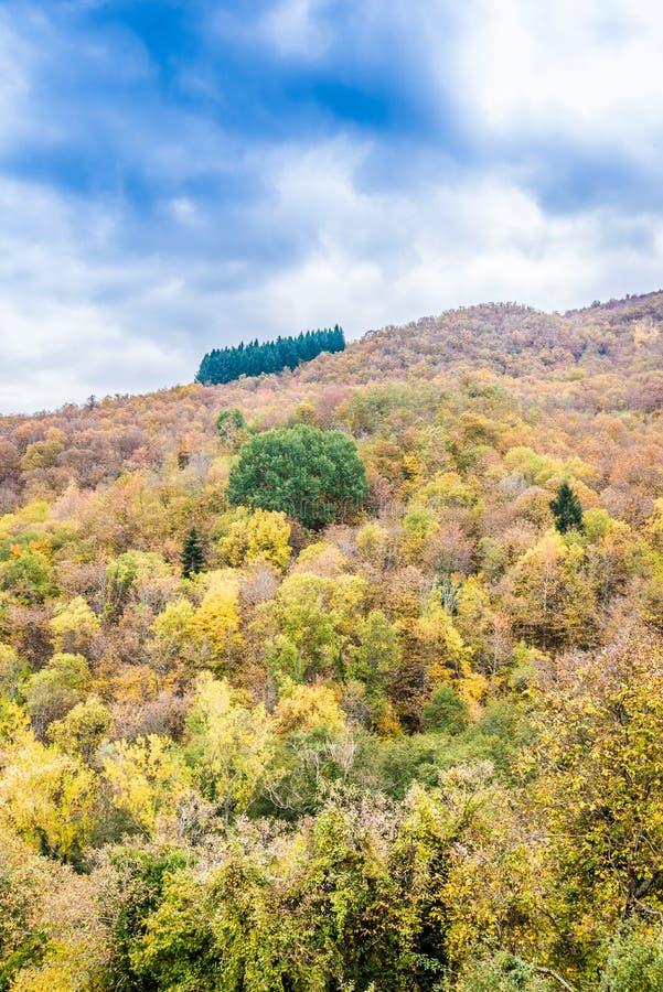 De stroom van de berg in de herfst royalty-vrije stock foto's