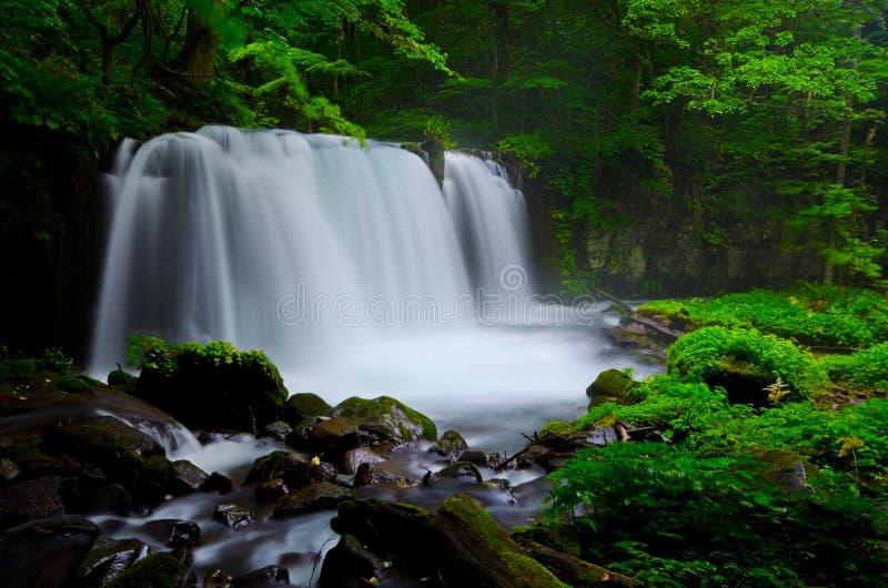 De stroom van de berg in Japan royalty-vrije stock foto's