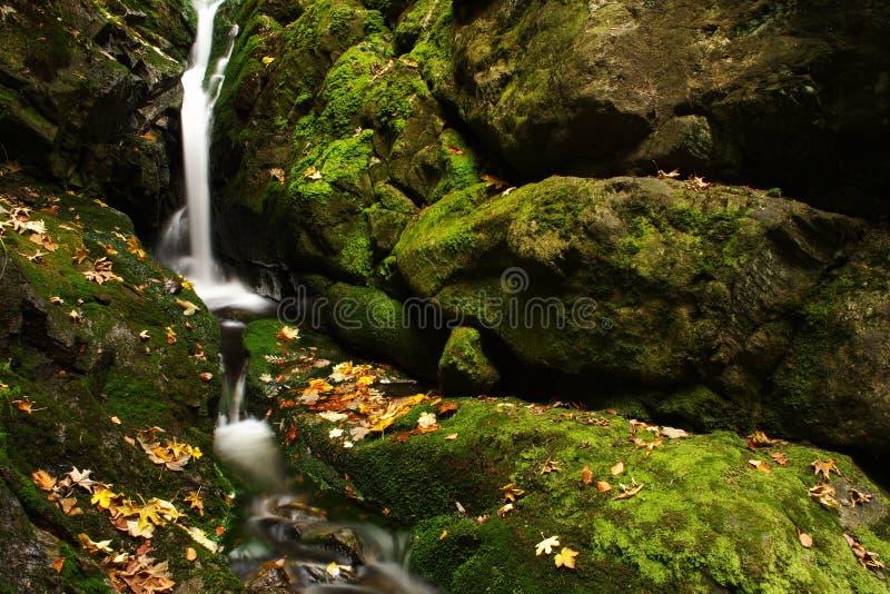 De stroom van de herfst in Reuzebergen royalty-vrije stock afbeelding